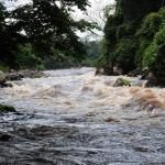 kamerun-dominik-szmajda-ekspedycja-dzikababa-wyprawa-4