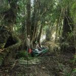 kamerun-wyprawa-szmajda-dzikababa-ekspedycja-2