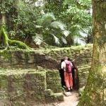 palenque-meksyk-gwatemala-belize-dzikababa