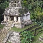 palenque-piramida-slonca-meksyk-dzikababa