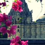 ranakpur-wyprawa-rajastan-dzikababa