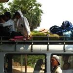 transport-bus