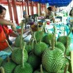 1-laos-wietnam-tajlandia-dzikababa-tramping