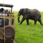 safari-afryka-dzikababa-zanzibar-2_0
