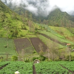 niecodzienna-podroz-indonezja-082